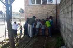 Los alumnos de 4º de Primaria revisan el estado de su huerto escolar