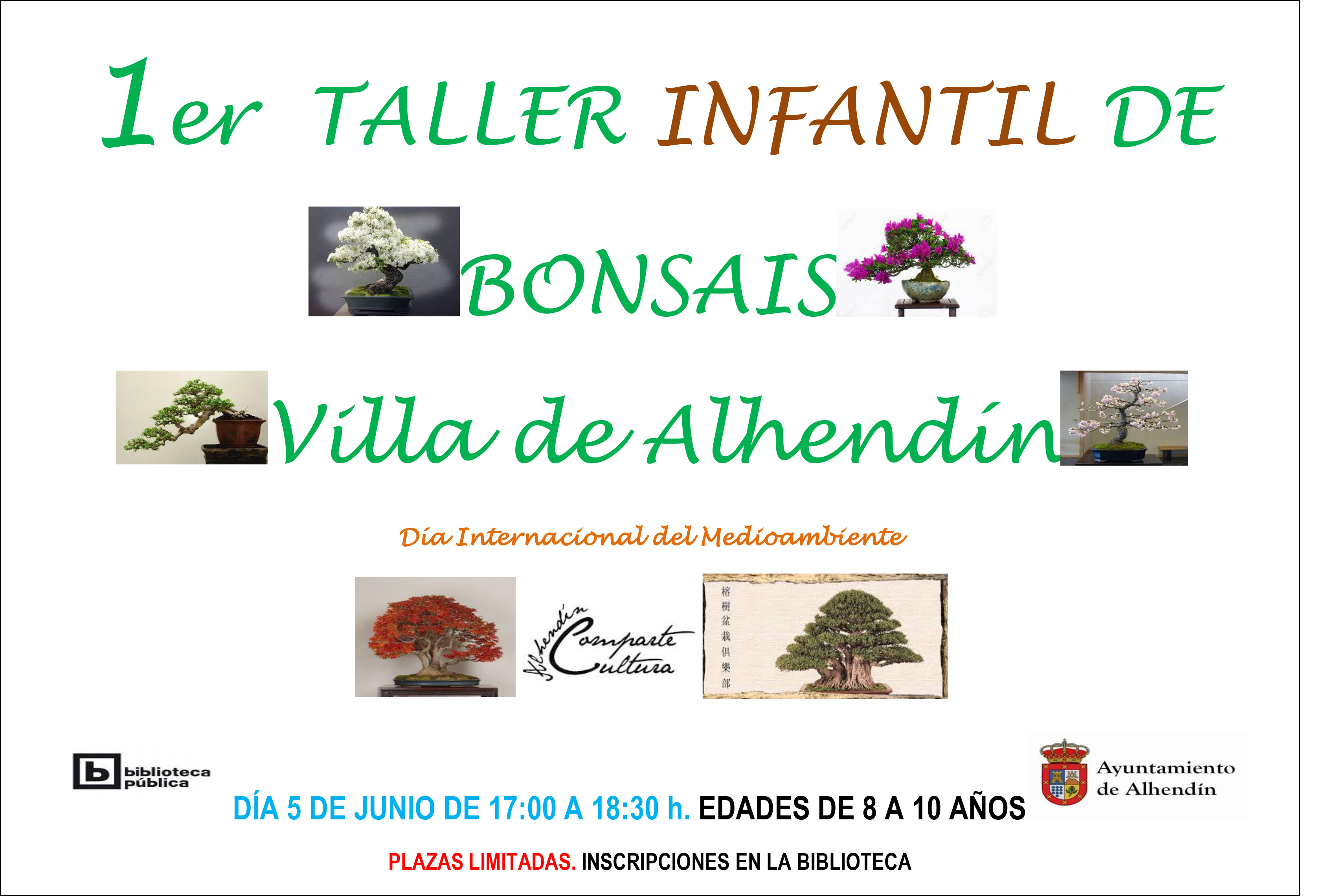 CARTEL-TALLER-BONSAI-1