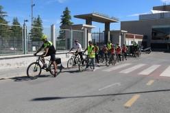 """Medio centenar de alumnos de 5º participan en el programa """"Caminos Escolares Seguros"""""""